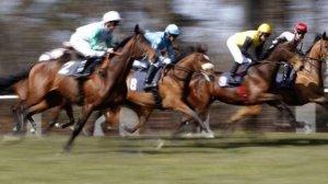 pferderennen in england